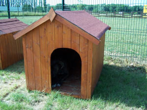 Niche à chien bi-pente pour gros chiens / 1,17 m2 / toit bitumé