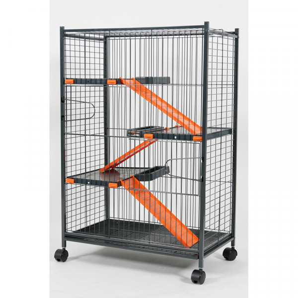 Cage INDOOR max loft 2 orange