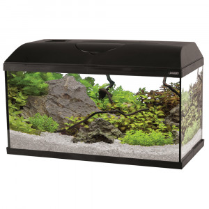 Aquarium FIRST, 60 cm, noir