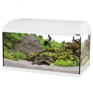 Aquarium FIRST, 60 cm, blanc