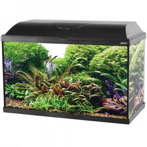 Aquarium ISEO, 60 cm, noir