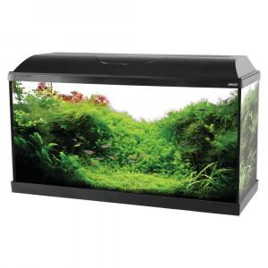 Aquarium ISEO, 80 cm, noir