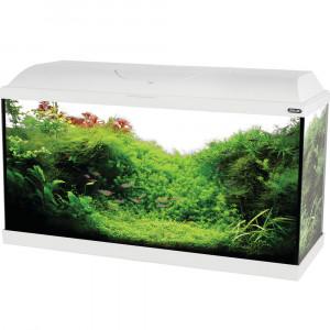Aquarium ISEO, 80 cm, blanc
