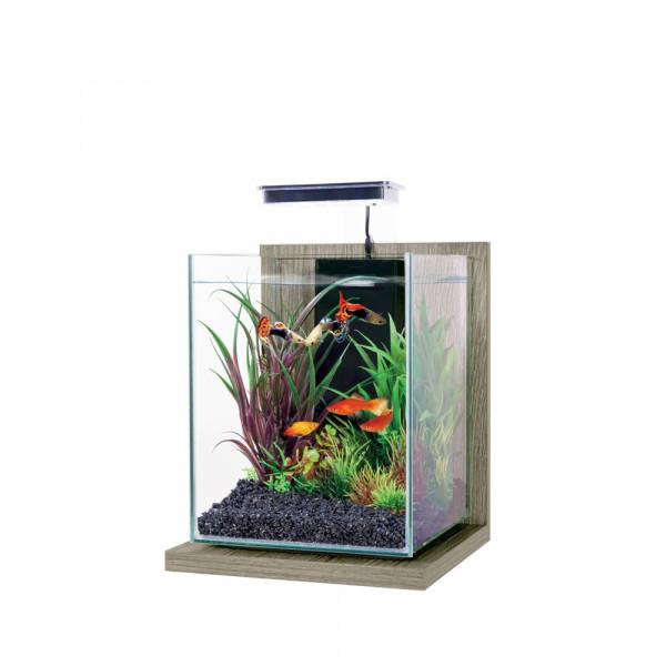 Aquarium JALAYA ZEBRANO, gris