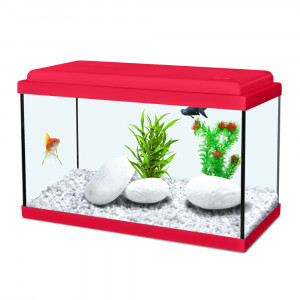 Aquarium NANOLIFE Kidz 40, rouge