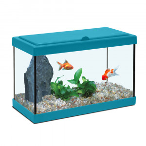 Aquarium NANOLIFE Kidz 40, bleu
