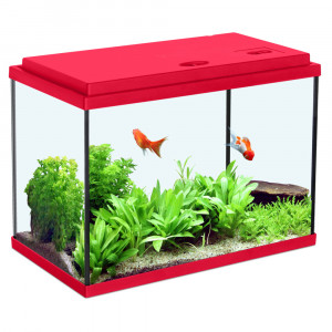 Aquarium NANOLIFE Kidz 50, rouge