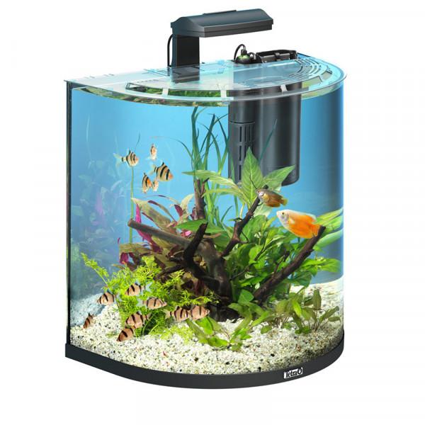 Aquarium Tetra AQUAART EXPLORER 60L