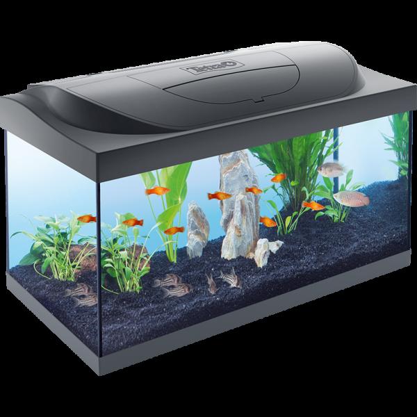 Aquarium Tetra STARTER LINE 54L