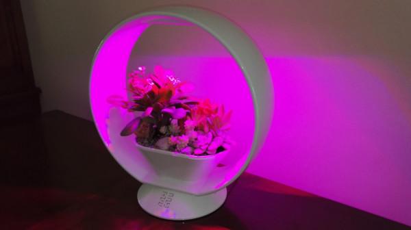 Lampe jardinière décorative forme ovale avec LED