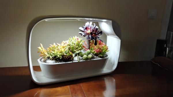 Lampe jardinière décorative forme rectangle avec LED